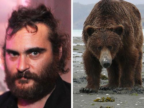 Хоакин Феникс и медведь