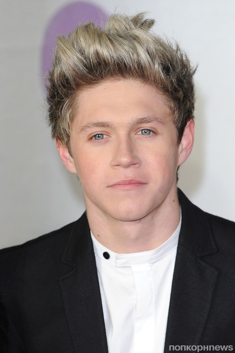 Найл Хоран, One Direction