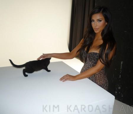 Ким Кардашиан и кошка