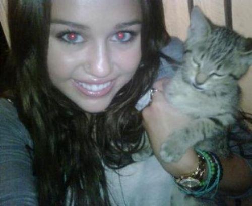 Маленькая фанатка Майли Сайрус грозит убить своего котенка, если та не вернется на Twitter