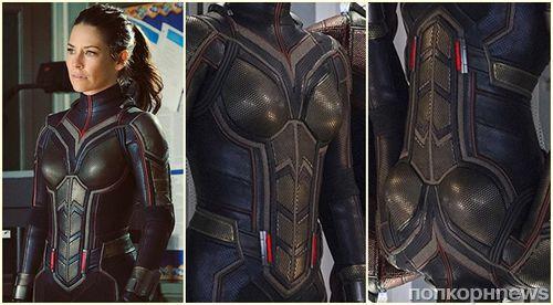 В дизайне костюма супергероини из фильма Marvel «Человек-муравей и Оса» обнаружили изображение пениса