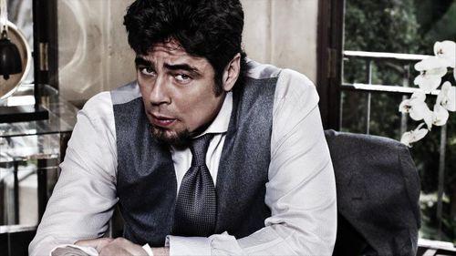 Бенисио Дель Торо для календаря Campari  2011