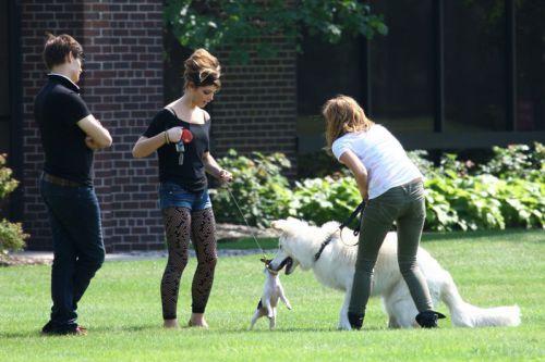 Эшли Грин и Майли Сайрус познакомили своих собак