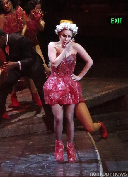 Lady GaGa снова надела наряд из мяса