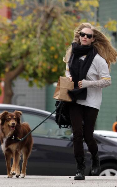 Аманда Сейфрид и Райан Филлипп: любовь к собакам обязательна