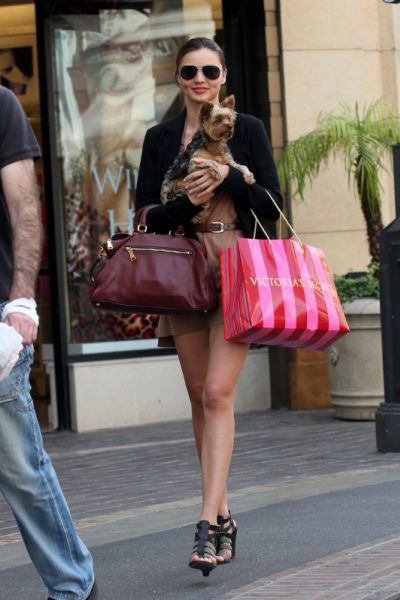 Миранда Керр со своим питомцем в магазине Victorias Secret