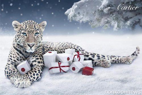 Праздничная рекламная кампания Cartier «Зимняя сказка»