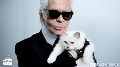 Карл Лагерфельд хочет жениться на своей кошке
