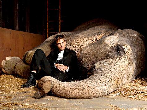 """Фильм """"Воды слонам"""" для Роберта Паттинсона трамплин в большое кино"""