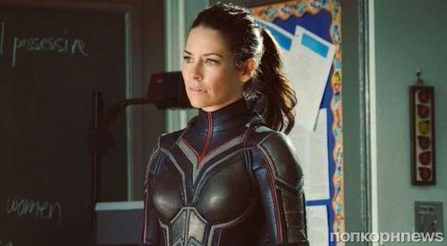 Marvel показала первый трейлер «Человека-муравья и Осы»