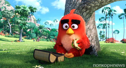 �Angry Birds � ���� � ������ �������� ���� ������