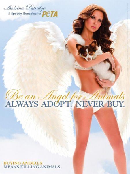 Одрина Пэтридж в рекламе PETA
