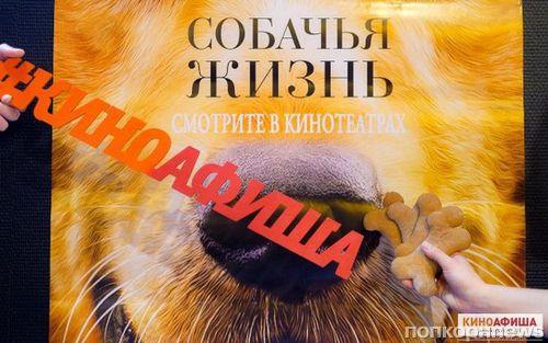 «Киноафиша» провела пресс-показ фильма «Собачья жизнь» в Санкт-Петербурге