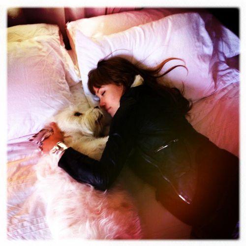 Оливия Уайлд: моя собака — это мой бойфренд