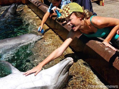 «Капитан Марвел» Бри Ларсон извинилась за фото с дельфином