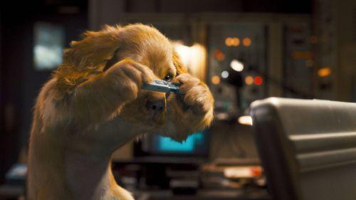 """Второй трейлер фильма """"Кошки против собак: Месть Китти Галор"""""""
