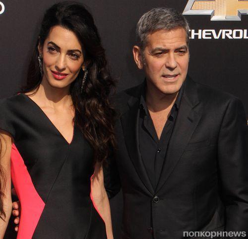 Джордж Клуни: «Жена гораздо умнее меня»
