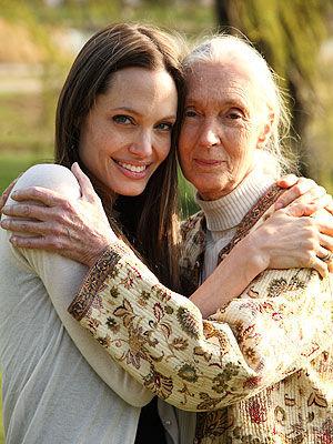 Анджелина Джоли появится в фильме «Путешествие Джейн»
