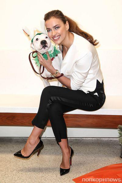 Ирина Шейк посетила приют для животных