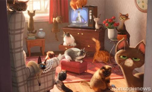 В Сети появился новый трейлер мультфильма «Тайная жизнь домашних животных»