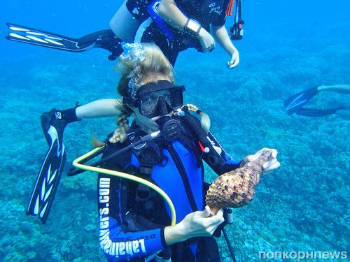 Пэрис Хилтон занялась дайвингом на Мауи