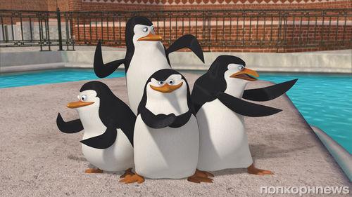 """Дублированный тизер мультфильма """"Пингвины из Мадагаскара"""""""