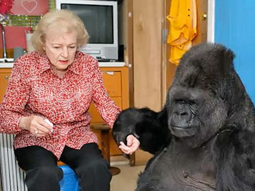 Бетти Уайт и ее поклонница Коко