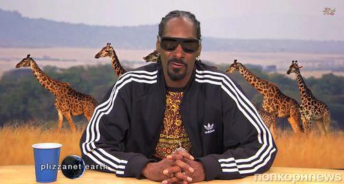 Видео: Snoop Dogg в мире животных