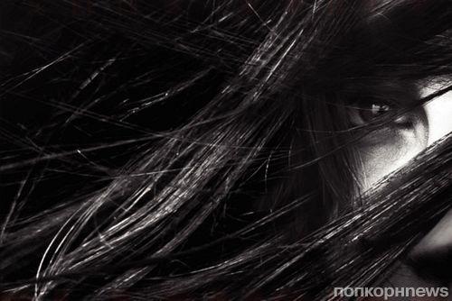Студия Lionsgate возьмется за подростковую франшизу «Черный дрозд»