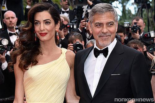 Западные СМИ: Джордж Клуни хочет развестись с женой