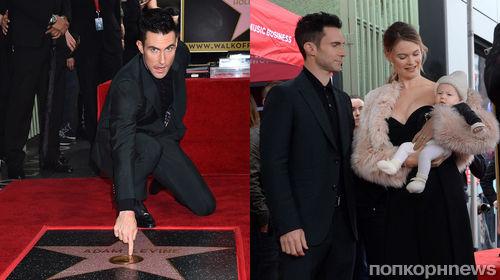 Фото: Адам Левин получил звезду на голливудской Аллее славы