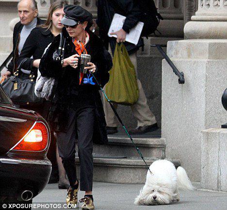 Кэтрин Зета-Джонс пугает свою собаку