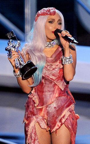 Мясное платье Lady GaGa выставили в музее