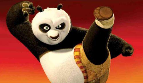 Чарли Кауфман работает над Кунг-Фу Панда 2?