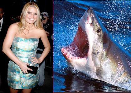 Джессика Симпсон боится акул