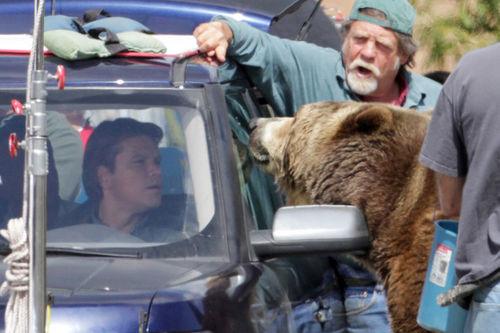 "Мэтт Дэймон и Медведь на съемках фильма ""Мы купили зоопарк"""