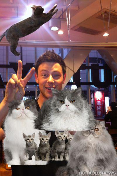 Звезды в Твиттере: Ким Кардашиан вооружена, а Кори Монтейт поздравляет с кошачьим праздником