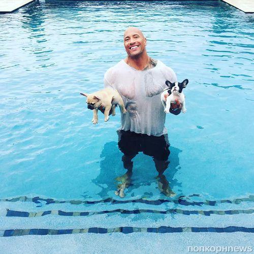 Дуэйн Джонсон жалуется на своих собак