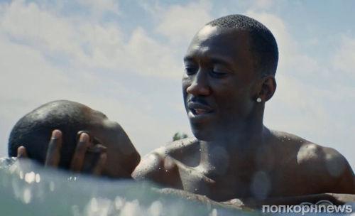 Критики: «Лунный свет» не заслужил свой «Оскар»