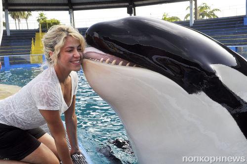Шакира и Пике провели время в океанариуме
