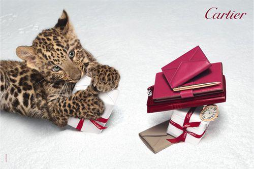 Рождественская рекламная кампания Cartier «Зимняя сказка»