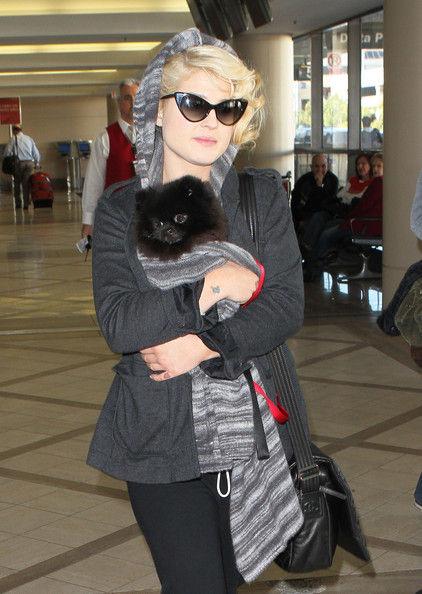 Келли Осборн со своим питомцем Сидом