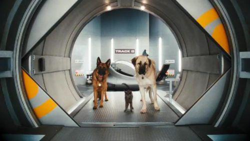 """Три отрывка из фильма """"Кошки против собак. Месть Китти Галор"""""""
