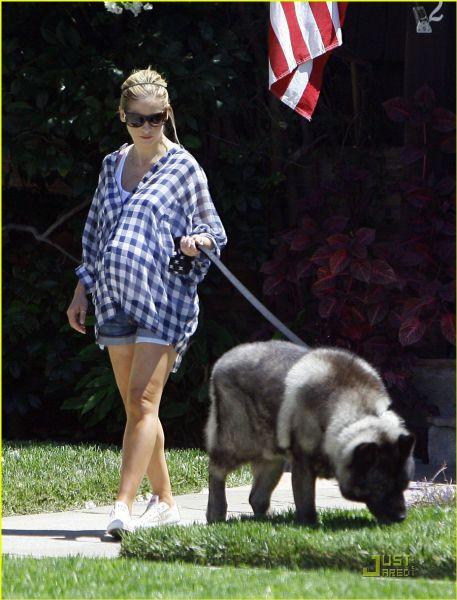 Беременная Сара Мишель Геллар гуляет с собакой