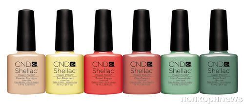 �������� ��������� Shellac Open Road �� CND
