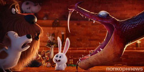 Кровожадный кролик Снежок в новом трейлере мультфильма «Тайная жизнь домашних животных»