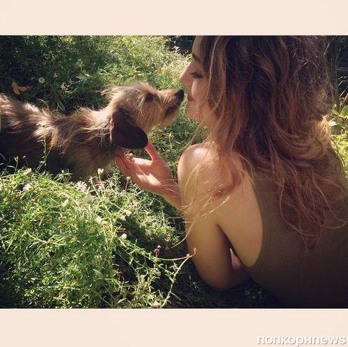 Звезды в социальных сетях: Кэти Перри опустилась на дно, а Мина Сувари слишком мала для коня