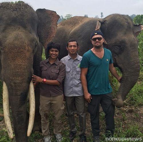 Леонардо ДиКаприо отправился в Индонезию защищать дикую природу