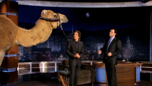 Бен Стиллер подарил Джимму Киммелу верблюда