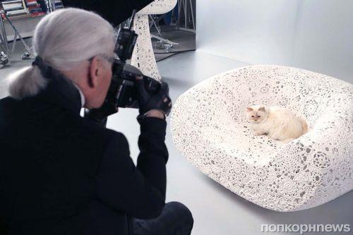 Кошка Карла Лагерфельда — новое лицо косметического бренда Shu Uemura